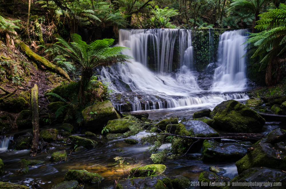 Horseshoe Falls Details, Mt Field National Park, Tasmania, Austr