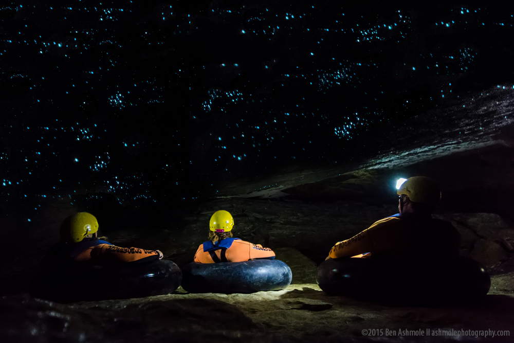 Watching Glow Worms, Charleston, New Zealand