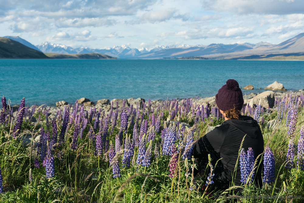 Watching Lake Tekapo, New Zealand