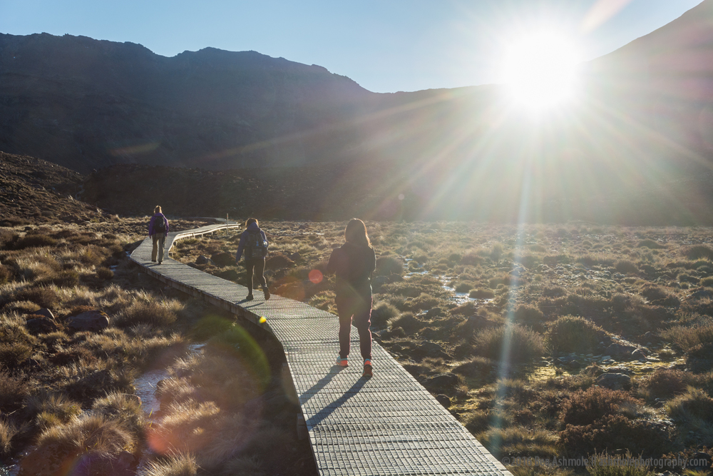 Hiking In The Morning Sun, Tongariro Crossing, New Zealand