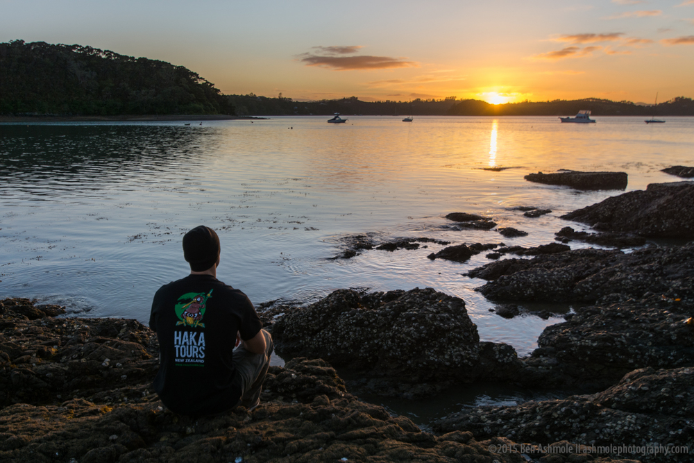 Watching Sunrise, Pahia, Bay Of Islands, New Zealand