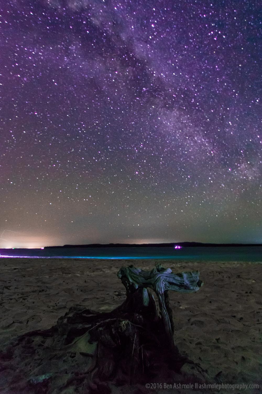 Drift Wood, Rainbow Beach, Queensland, Australia
