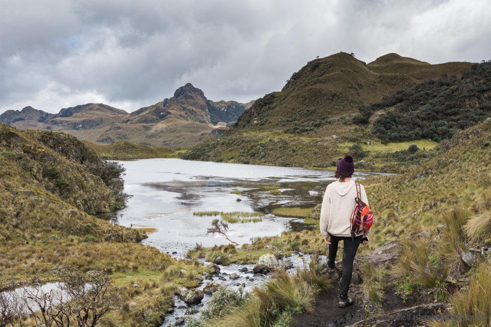 El Cajas National Park 3, Ecuador