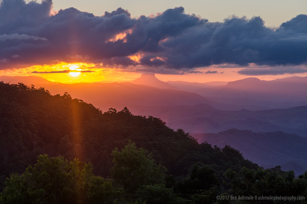 Sunset Over Rainforest, Lamington National Park, Queensland, Aus