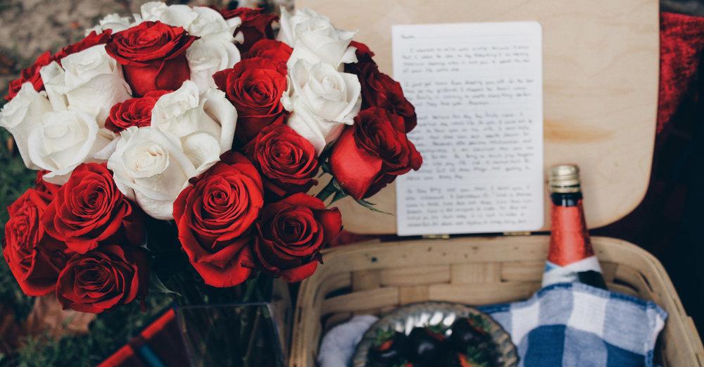 Valentine's Day Picnic