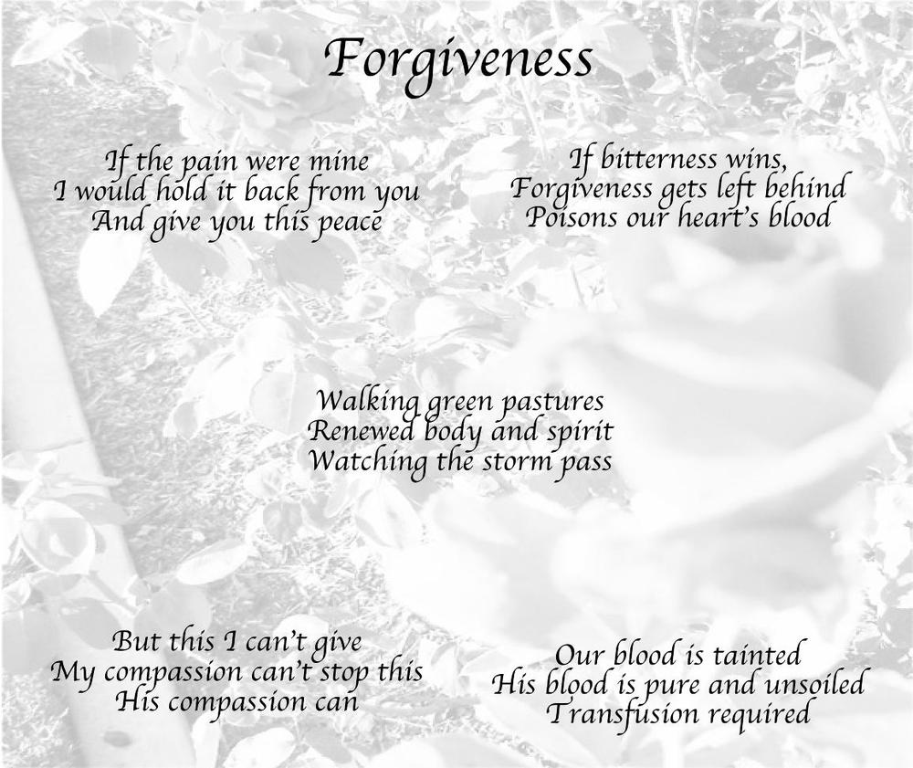 Haiku of Forgiveness