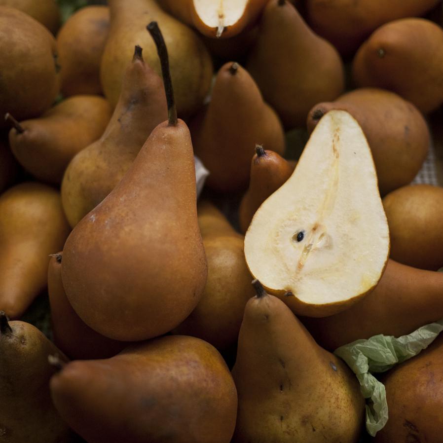 Half Pear, Pair