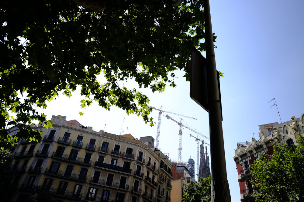The construction cranes around Sagrada Familia provided an ever-present landmark.