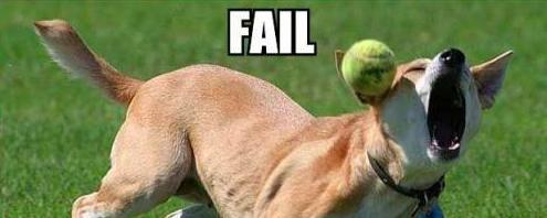 humor-failure-funny (20).jpg
