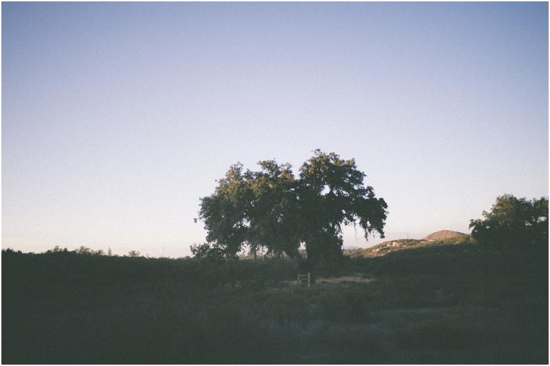 blogged_0027.jpg