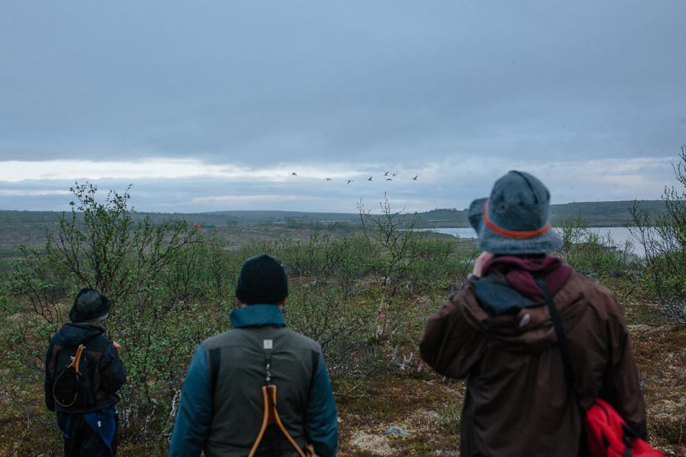 Norja-Norway-kalastus-Mollesjohka-Atte-Tanner-Photography-7.jpg