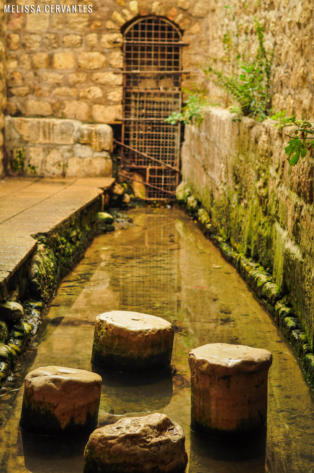 jerusalem-1 watermark.jpg
