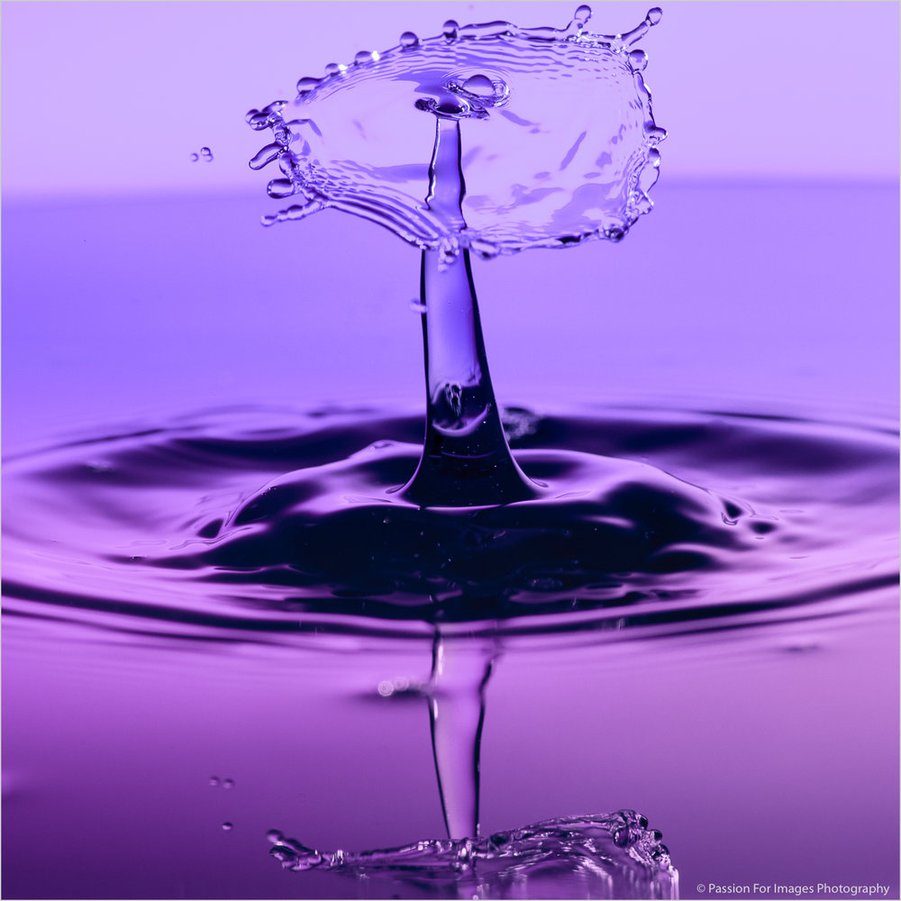 _D7C9922_2018_11_Waterdrops-Edit_PFI-Print-Full-JPEG.jpg