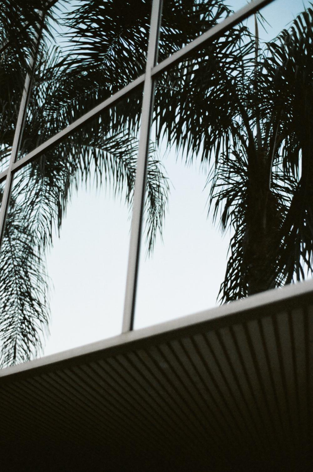 Venture & Virtue / Second Floor Flat