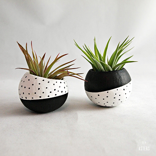 Black and White Dot Plant Pods by Sea & Asters, $35