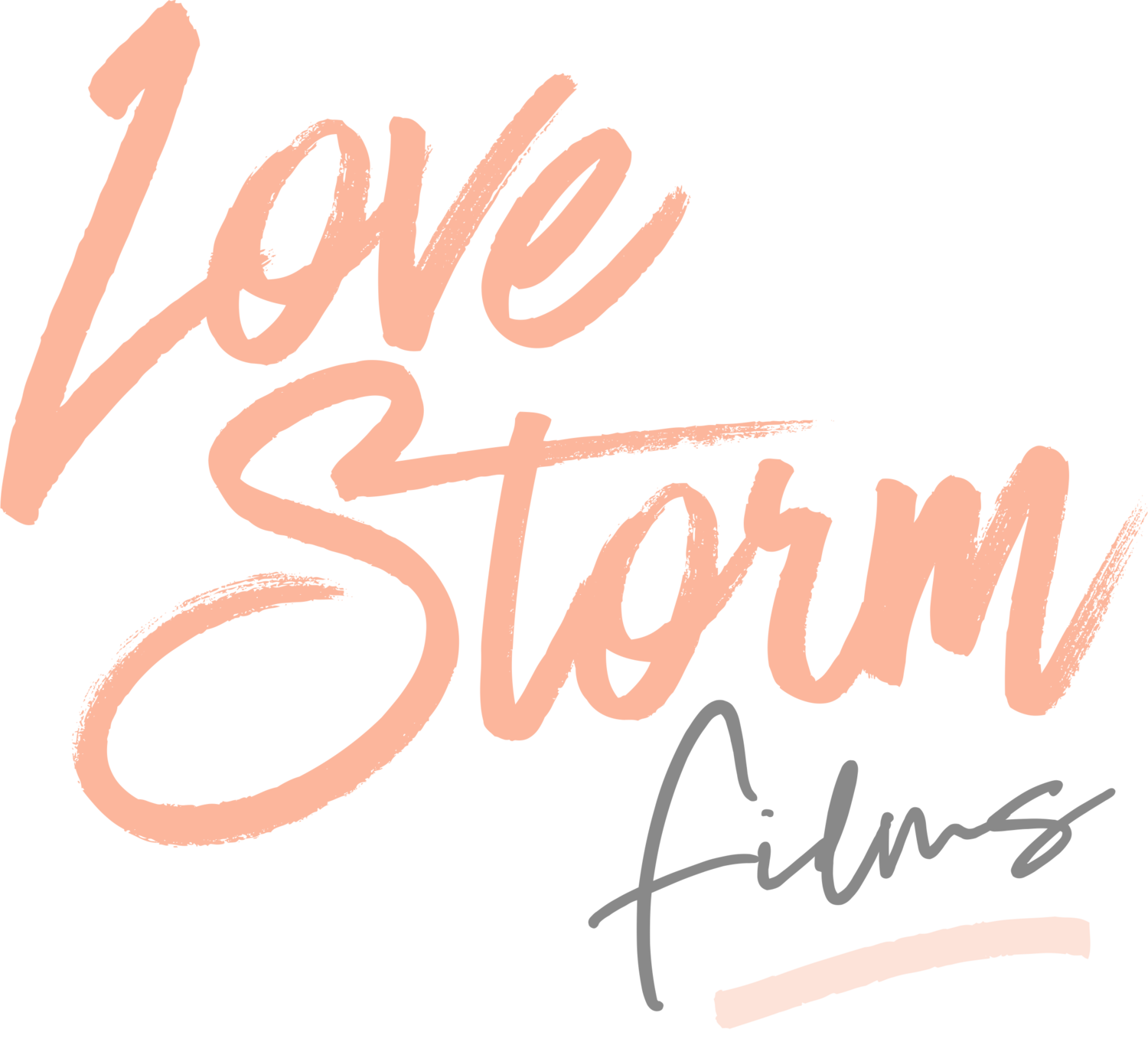 ♥ Sydney Wedding Films / Love Storm Films