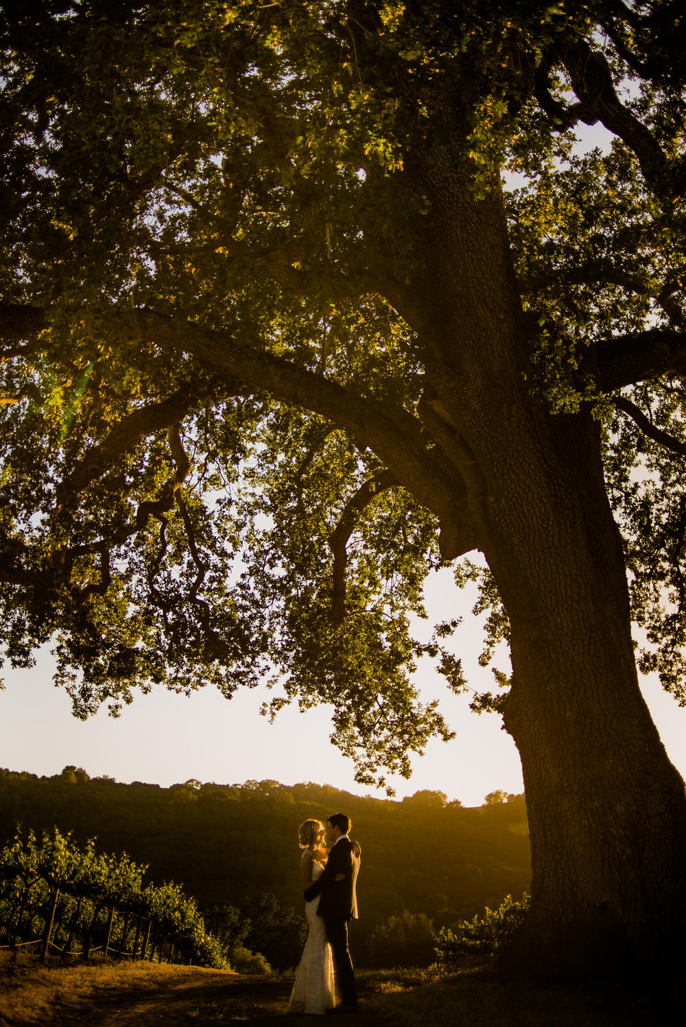 Hammersky Vineyard wedding