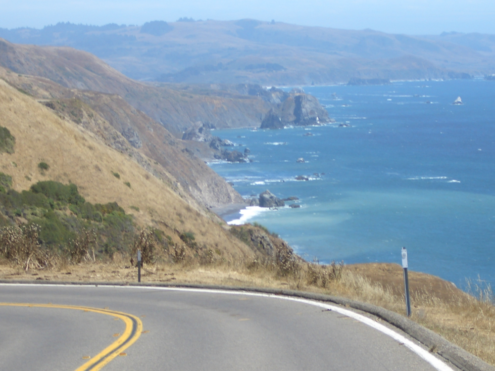 Highway 101 view