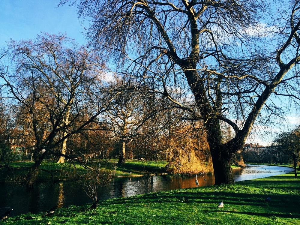 Regent's Park ...in December...