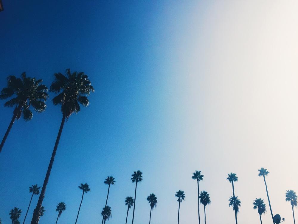 Parking lot views, LA vibes..