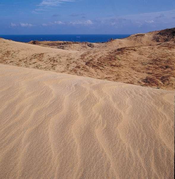 風吹砂為東海岸鵝鑾鼻與佳樂水兩遊憩區之中間站,距鵝鑾鼻約7公里。 (圖片來源:墾丁國家公園)