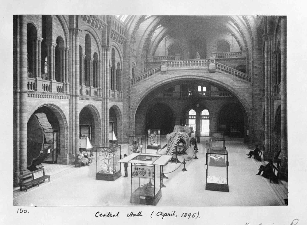 Central Hall of the Natural History Museum in 1895. © The Trustees of the Natural History Museum, London
