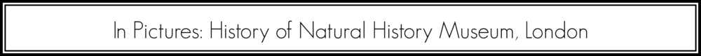 Natural History Museum banner.png
