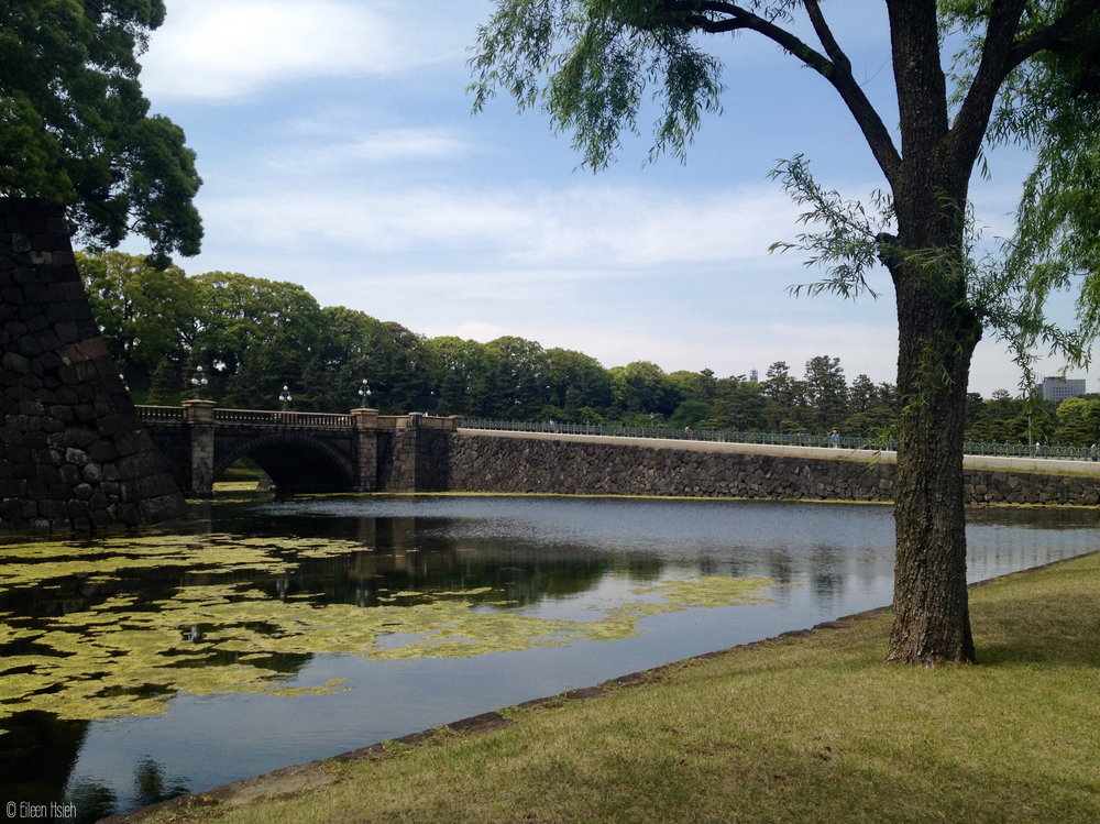 Another view of the Palace moat. 皇居護城河。© Eileen Hsieh