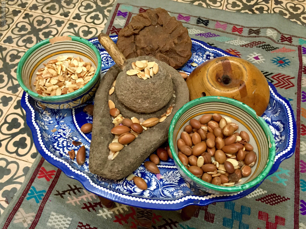 Morocco's coveted argan oil is produced from the kernels of the argan tree. 摩洛哥有名的堅果油(又稱阿甘油)就是由這種堅果搾取而成的。