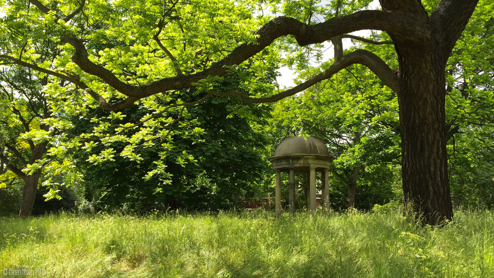 A rotunda on the Mound, surrounded by narcissus in the springtime and a black walnut tree planted by Queen Mary in the 16th century. 涼亭坐落在種滿水仙花的小丘陵上,依偎着瑪麗皇后十六世紀種植的黑核桃樹 。   © Eileen Hsieh