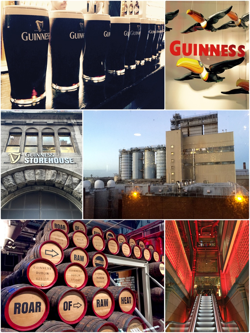 Guinness Storehouse Dublin followthatbug follow that bug eileen hsieh.jpg
