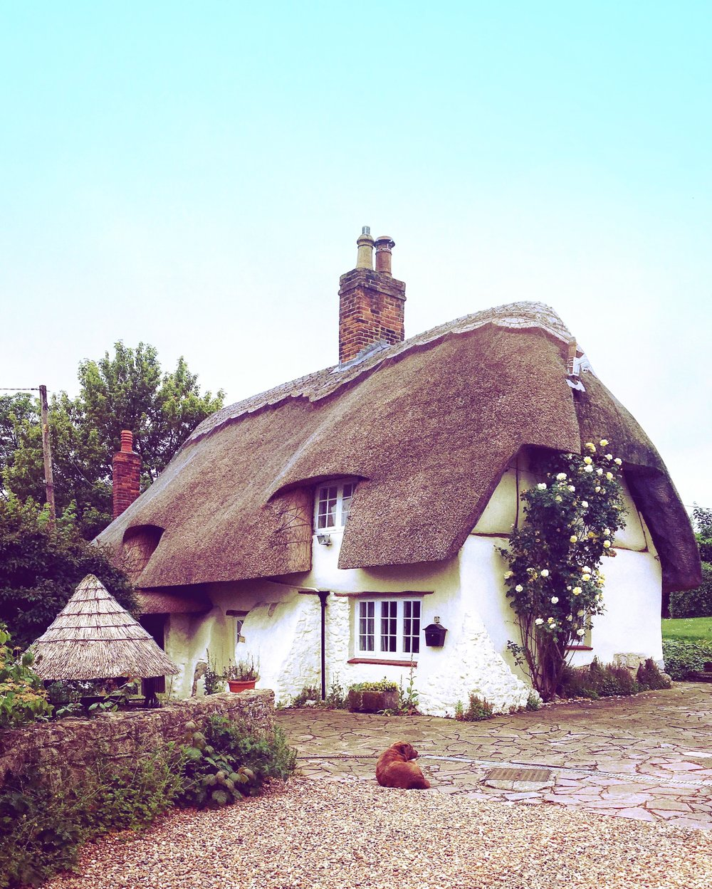 A quaint 17th century thatched cottage near Waddesdon Manor in Buckinghamshire. © Eileen Hsieh / Follow That Bug