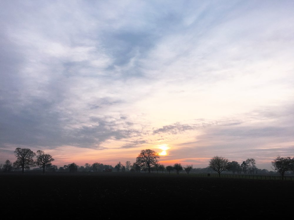 A sunset view of the surrounding countryside from the back garden. © Eileen Hsieh / Follow That Bug