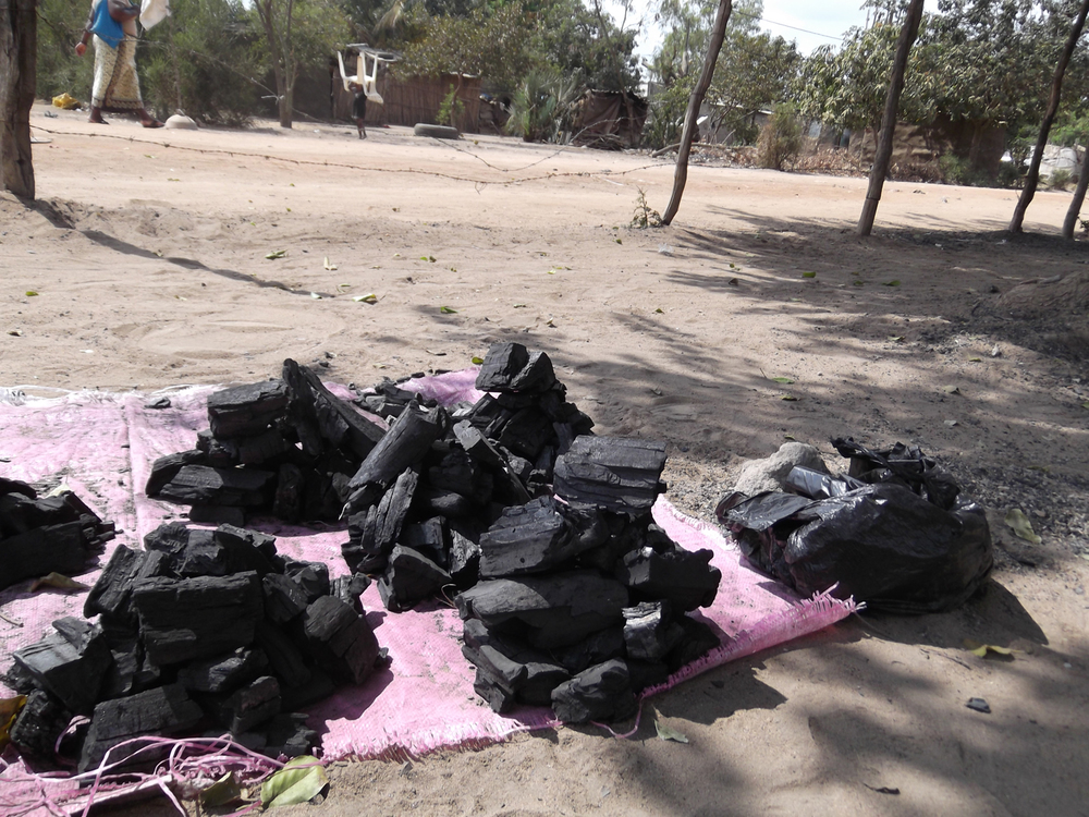 As I have a big family to support I earn some money selling charcoal.  © Celeste Chirinza 2012 / ODI / PhotoVoice