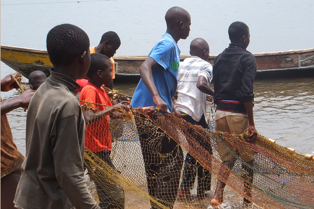 Women and children pulling out fish from the lake, Kenya.  © Beryl Oyier 2012 / ODI