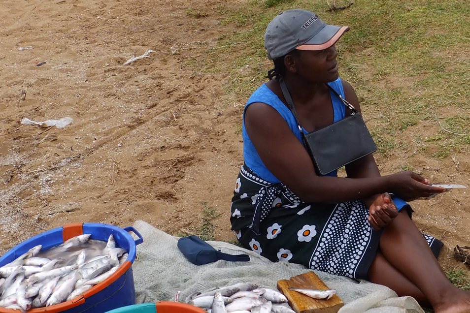 A woman cleaning fish at the beach, Kenya.  © Beryl Oyier 2012 / ODI