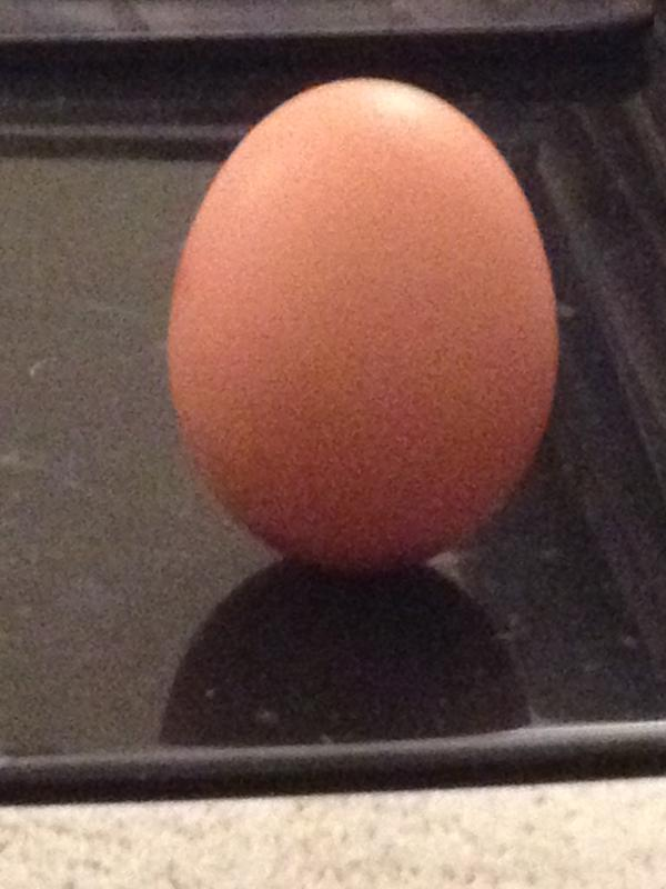 Egg balanced.jpg