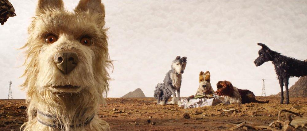 isle of dogs1.jpeg