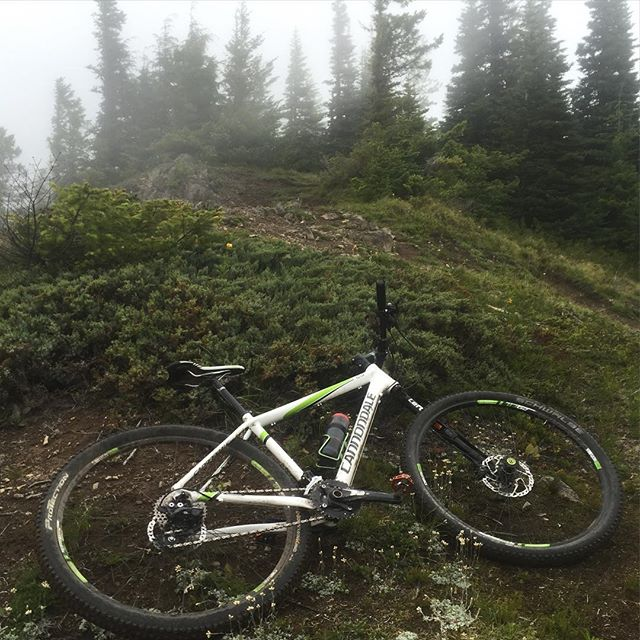 Climb 3000 ft just to see clouds. Still an epic descent. @ridecannondale #wamtb #mtb #nwmtb