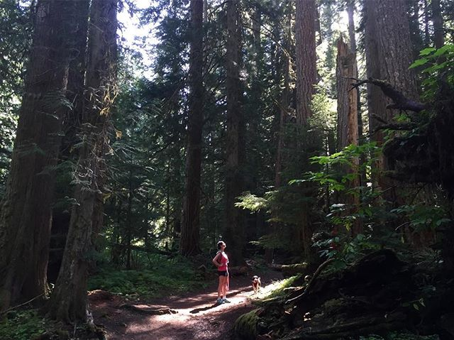 First saturday off this summer, had to make the most of it. #washington #northwest #hiking #getrad @jannabassett