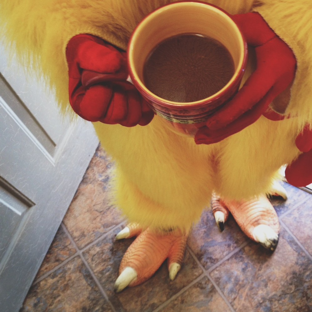 Coffee provided by large, friendly chicken