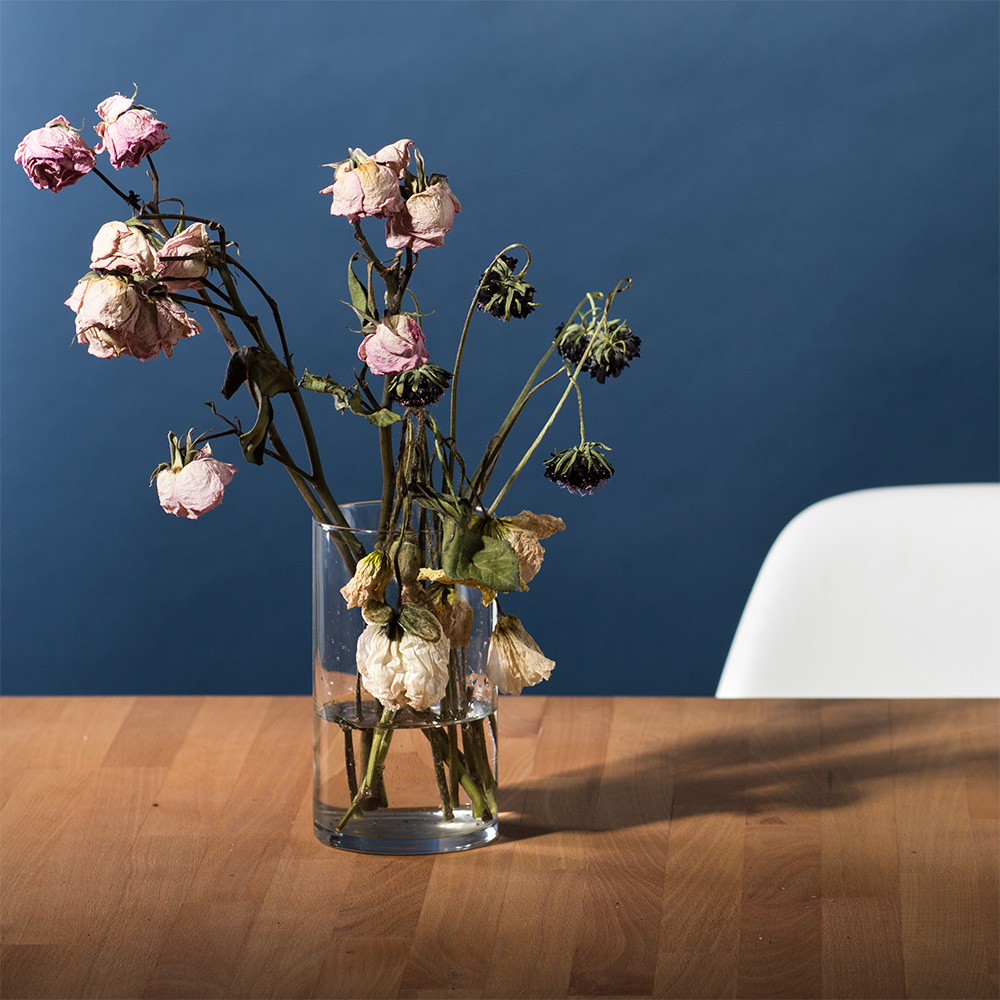 Sarah-Frankie-Linder_Dead-Flowers