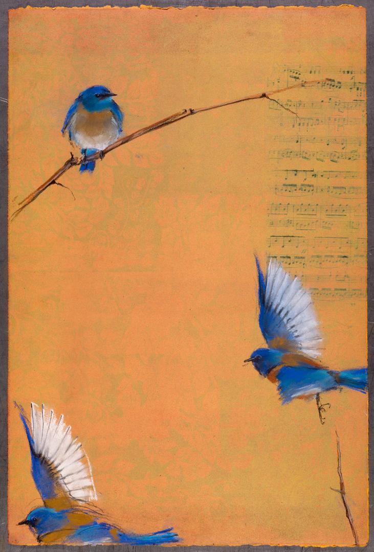 Bluebirds on Music