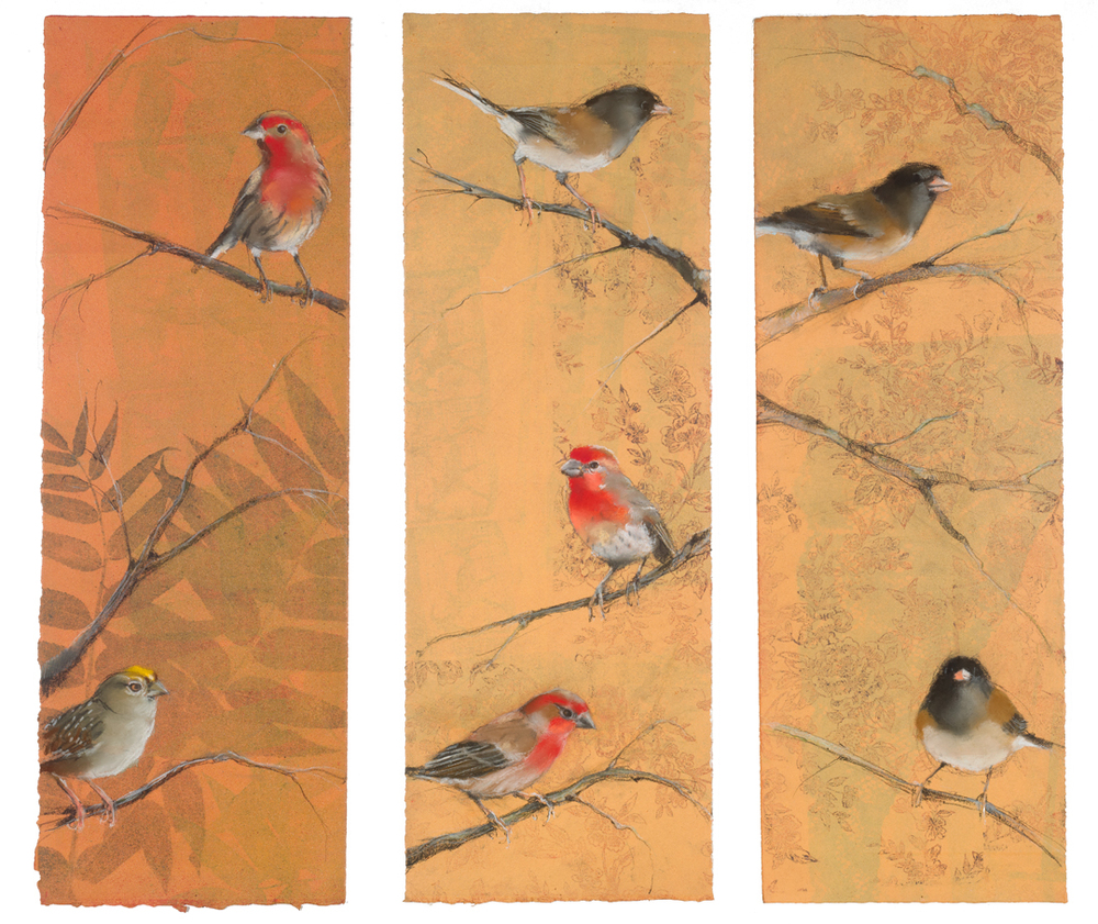 Finches, Juncos and Sparrows triptych