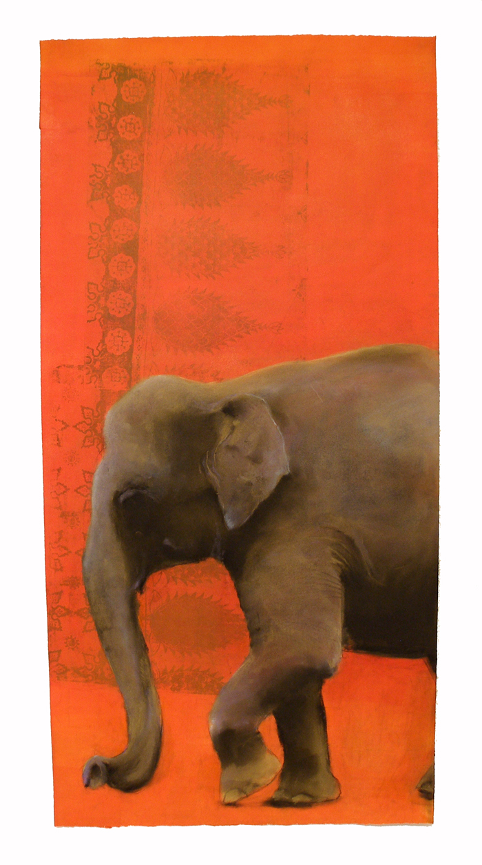 Elephant #22