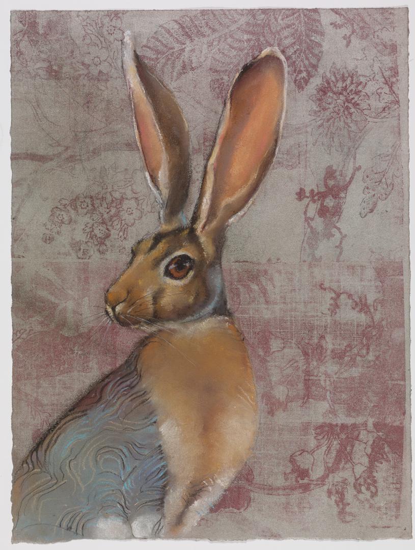 Jack Rabbit #27