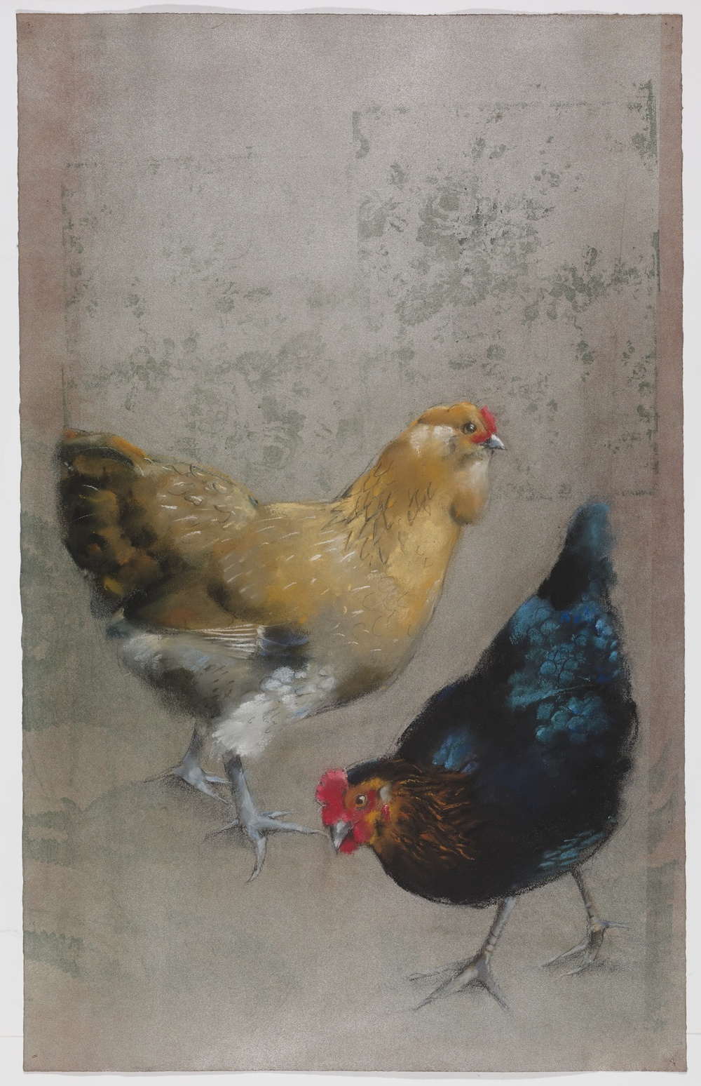 2 Chickens #14