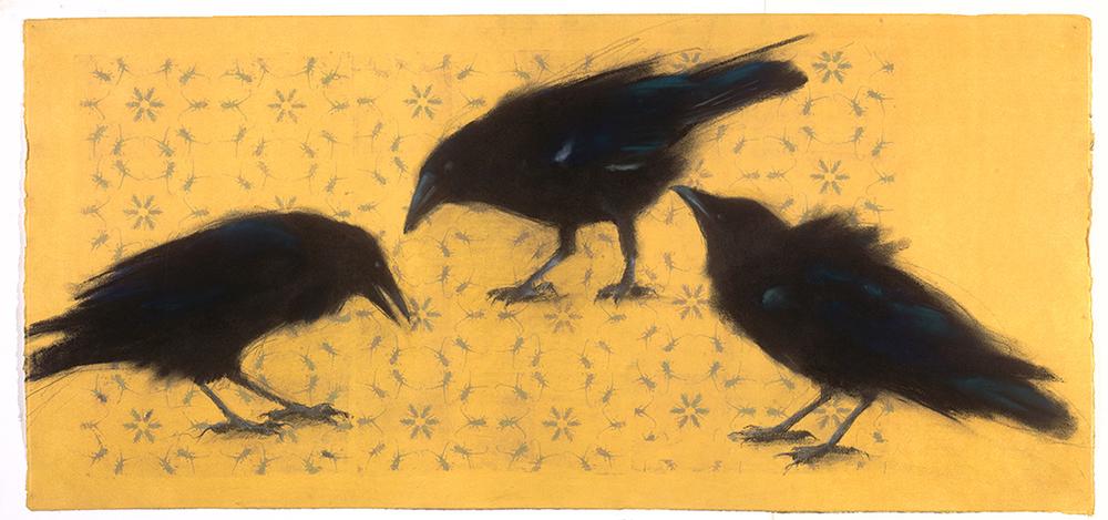 3 Ravens on Bugs