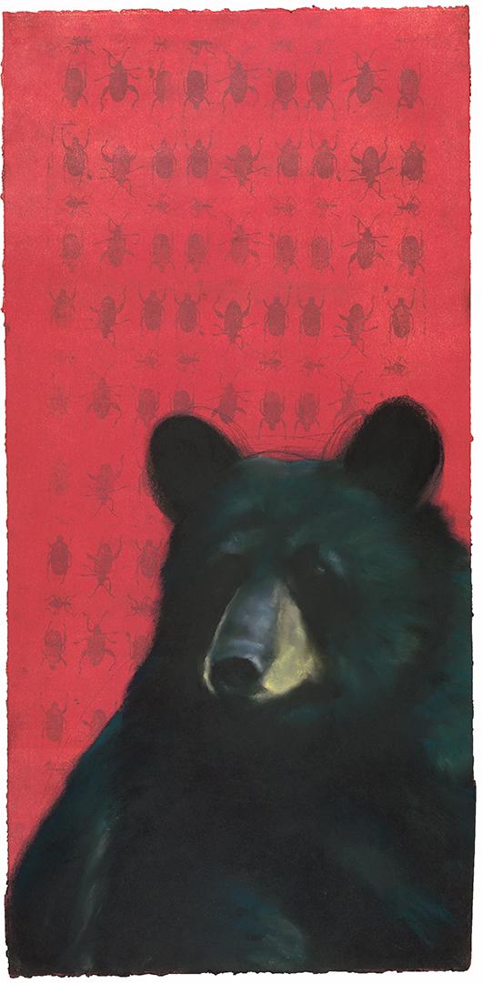 Black Bear on Beetles 3