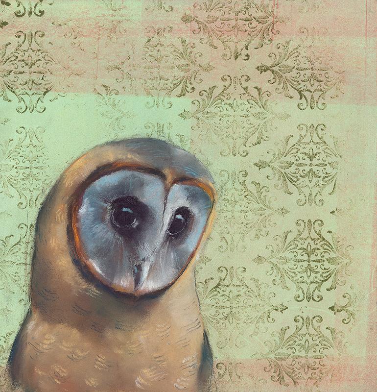 Sooty Face Owl